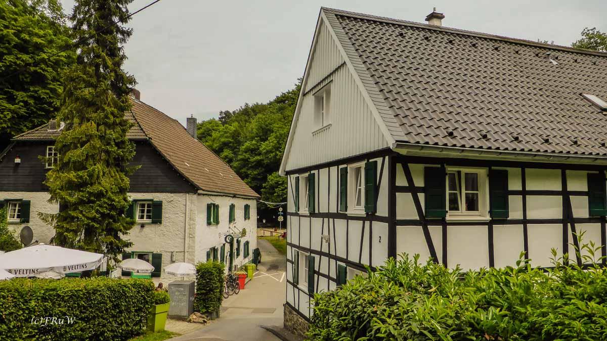 Eifgenbachrunde moderat_0487