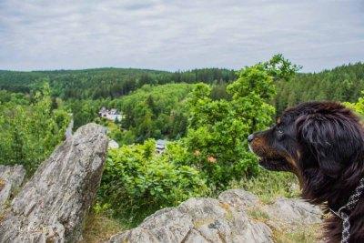 Wandern Harz Region im Selketal - Tolle Aussicht