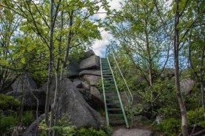 Urlaub Harz 2015_0470