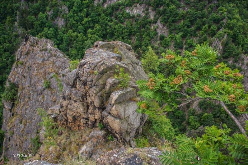 Urlaub Harz 2015_0631