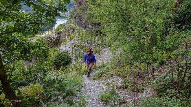 Erdener Treppchen (55)