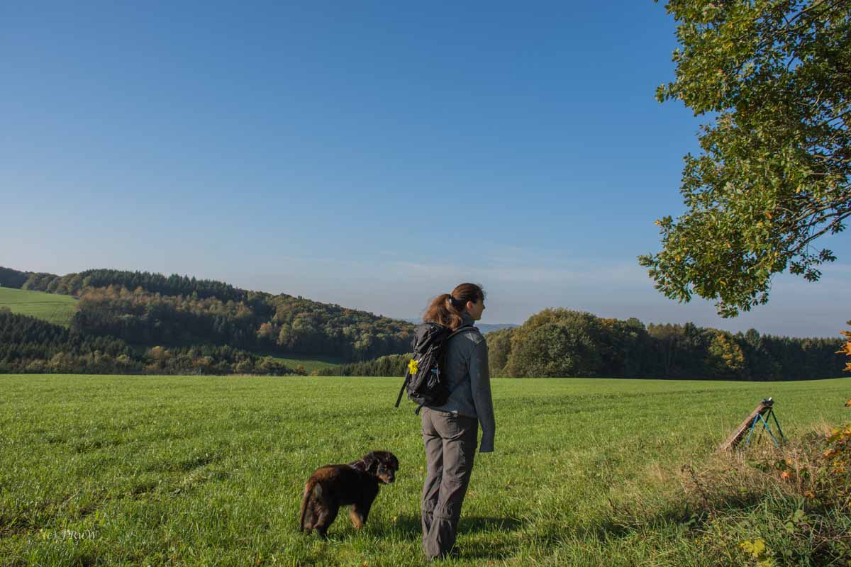 Wandern auf dem Landlebenweg
