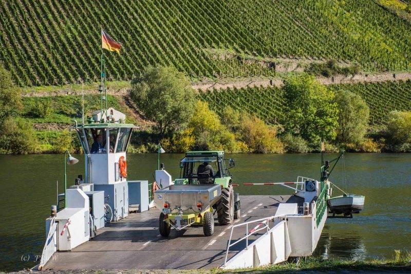 BriedelerSchweiz (176)