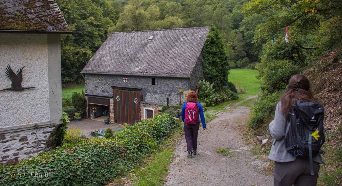 Oberes Baybachtal (111)