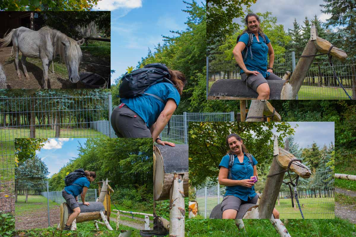Collage Tanja