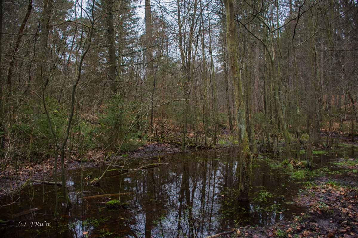 Sellhorn_Totengrund (28)