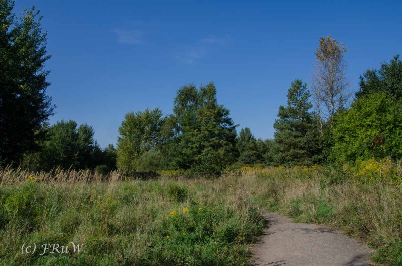 Hoehenfeldersee_Dellbrueck1