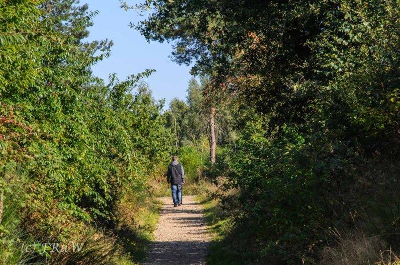 Hoehenfeldersee_Dellbrueck13