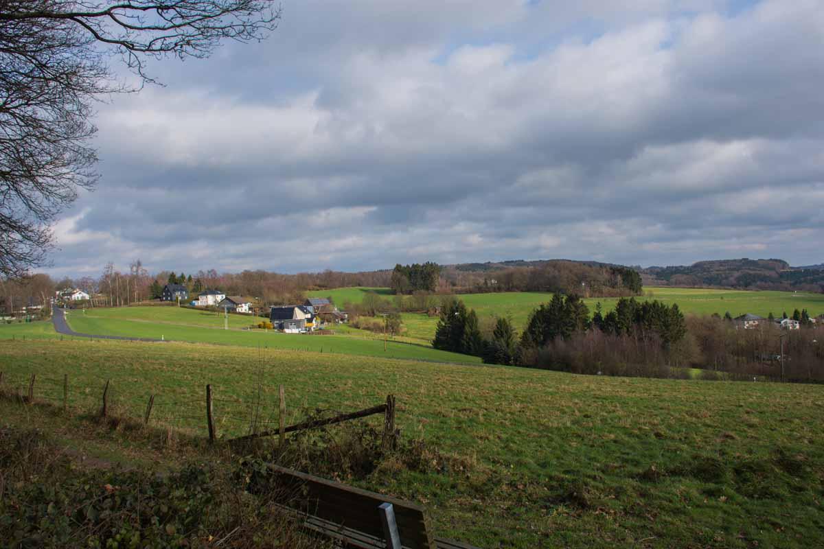 Waldmythenweg (97)
