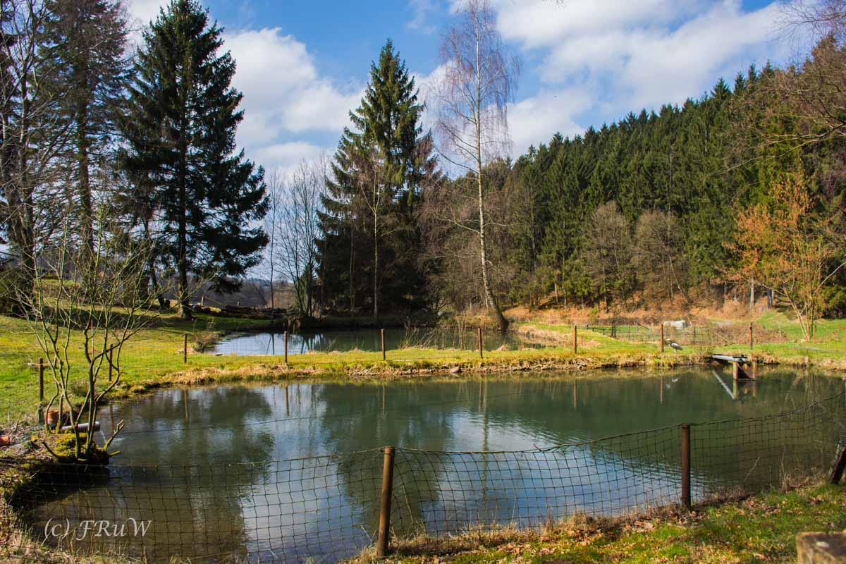 Wildenburger Land (138)