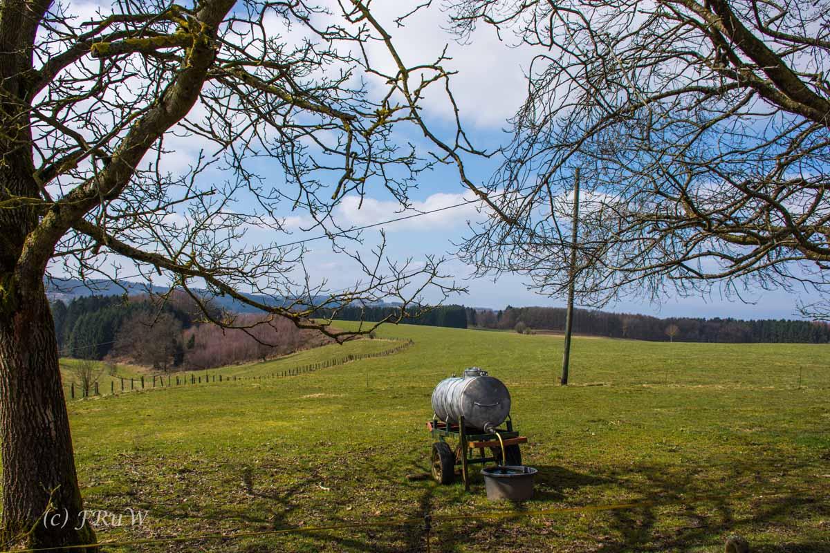 Wildenburger Land (67)