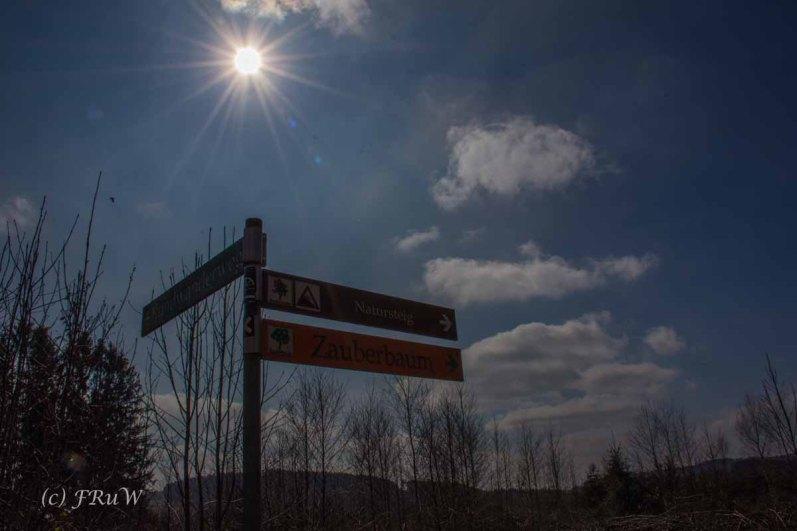 Wildenburger Land (84)