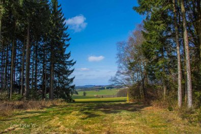 Wildenburger Land (86)