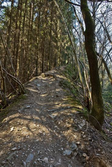 Unter anderem führt er über diesen Grat bergan. Ist man dann oben, geht es auf schmalem Weg parallel zur einer MTB-Strecke wieder ins Tal.