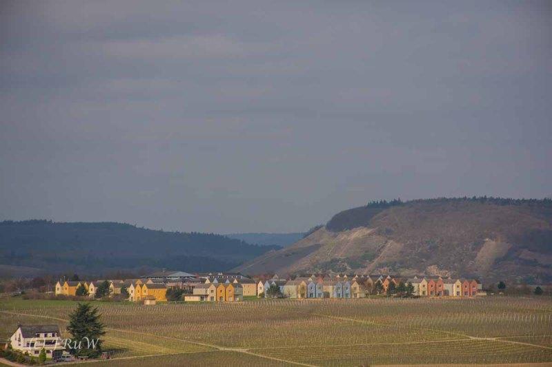 Trittenheim  (15)