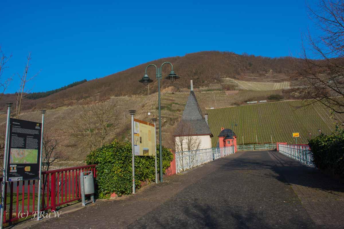 Trittenheim (166)