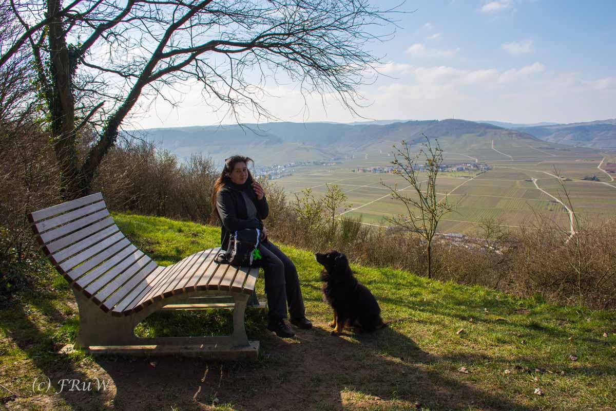 Trittenheim (45)