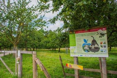 Kloster Knechtsteden_und_Tierpark_0453