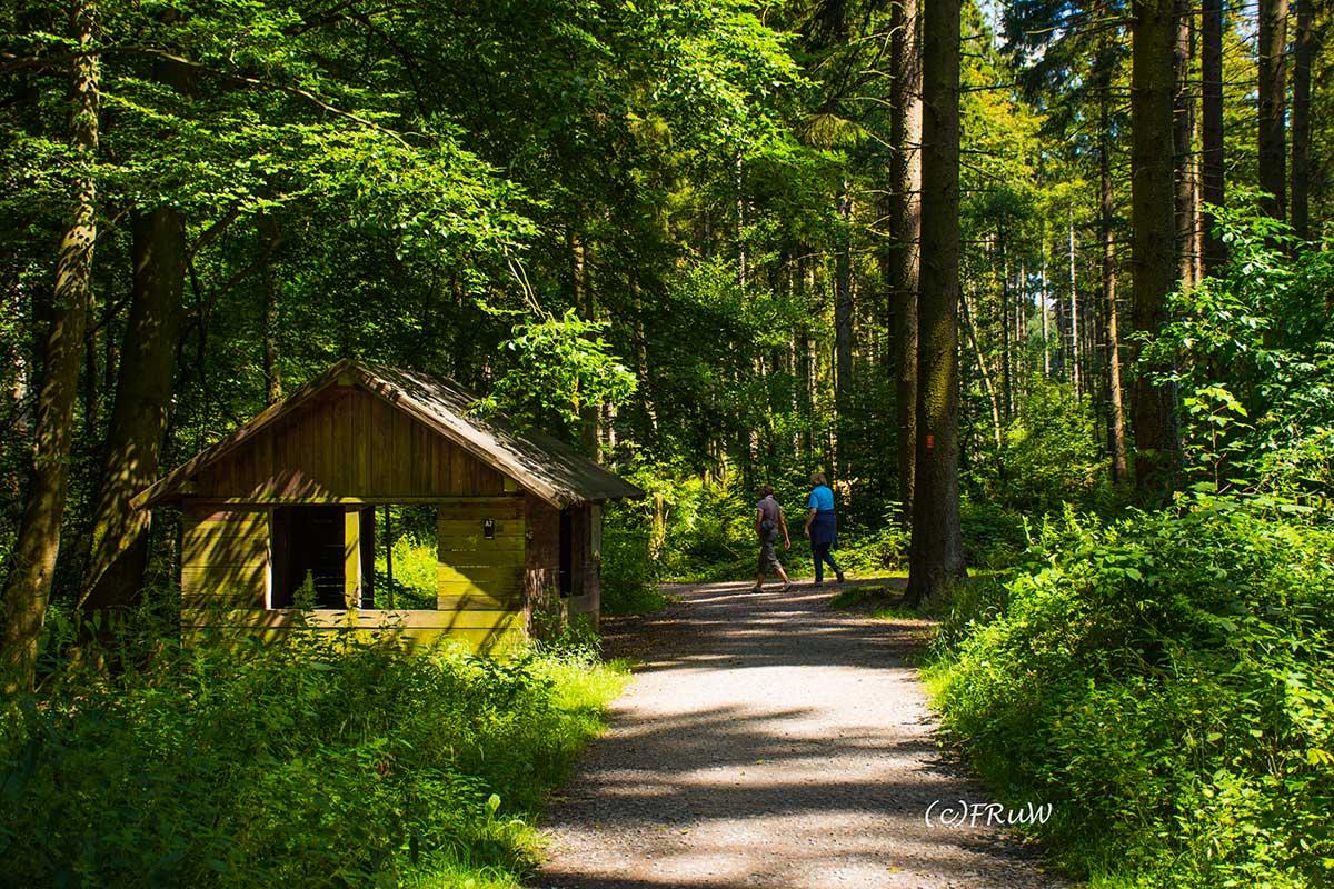 BergischerStreifzugFuhrmannsweg-(125)