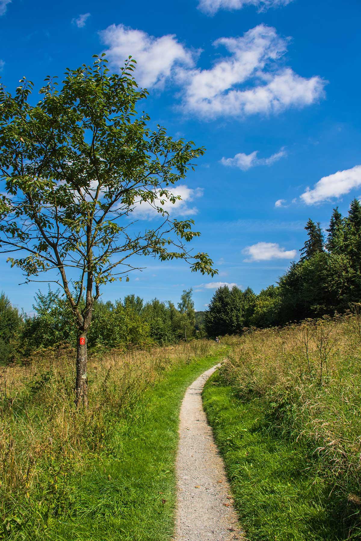 Bergischer Streifzug Fuhrmannsweg