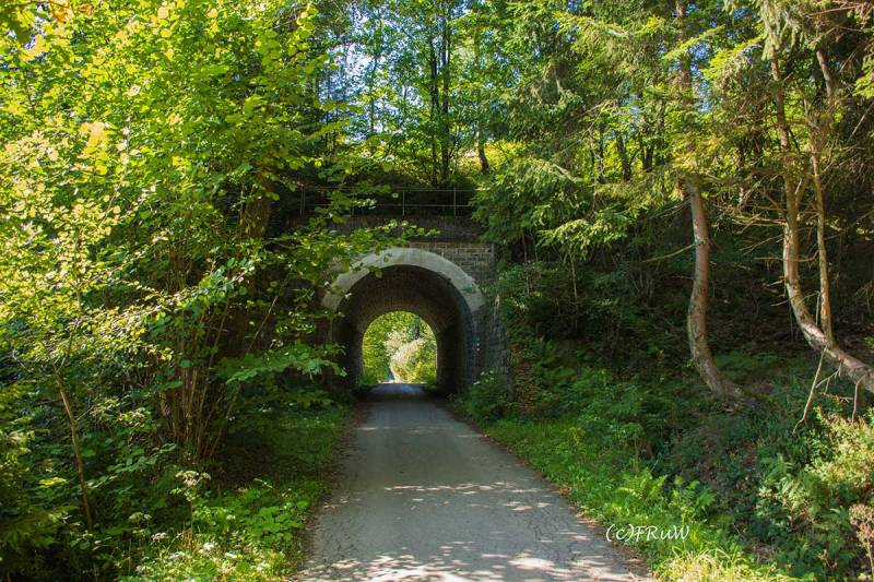 BergischerStreifzugFuhrmannsweg-(318)