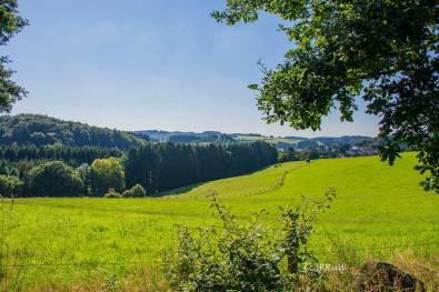 BergischerStreifzugFuhrmannsweg-(325)