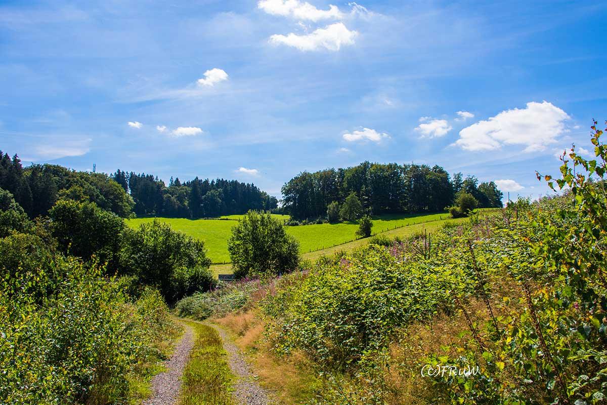 BergischerStreifzugFuhrmannsweg-(35)