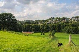 Leverkusen_Burscheid_0266
