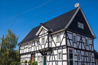 Bergischer_Streifzug_Pilgerweg (107)