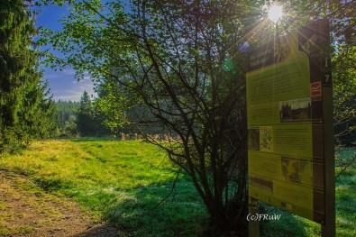 fuchskaute_erlebnisschleife_westerwald-16