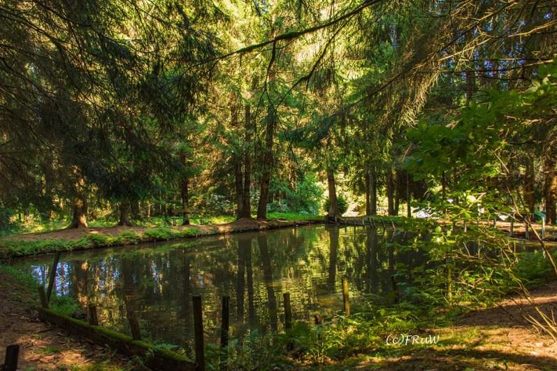 fuchskaute_erlebnisschleife_westerwald-262