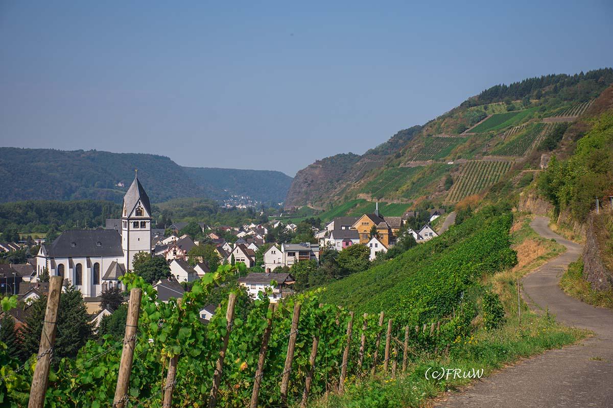 rheinsteig_rodenbach_leutesdorf-155