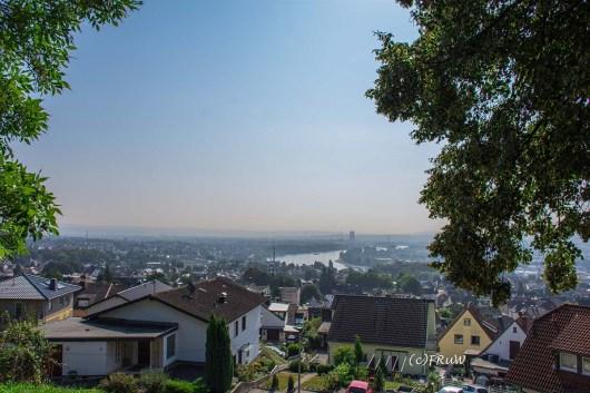 rheinsteig_rodenbach_leutesdorf-80