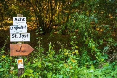 wacholder_ginster_-pilgerpfade-bei-st_-jost-296