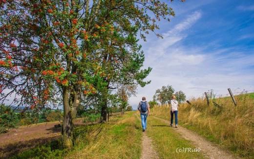 Naturweg Kahle Pön