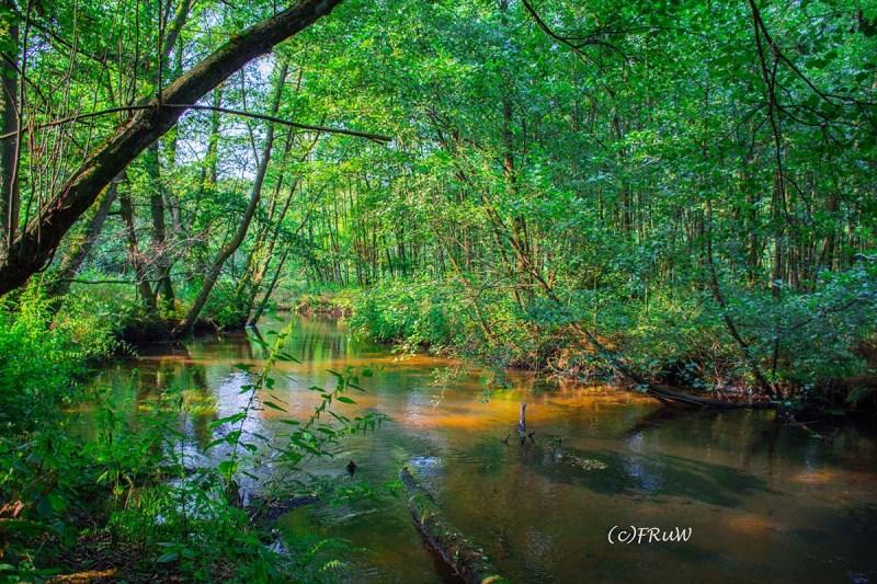 W3_FlussWaldErlebnispfad (34).jpg