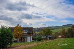 ruwerhochwaldschleife-66