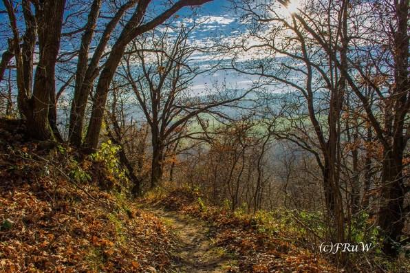 vulkan-und-panoramaweg-156