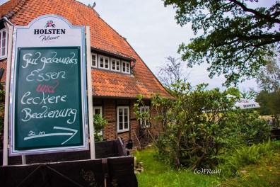 wilsederberg_wilseden_und_campreinsehlen-145