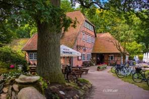 wilsederberg_wilseden_und_campreinsehlen-152