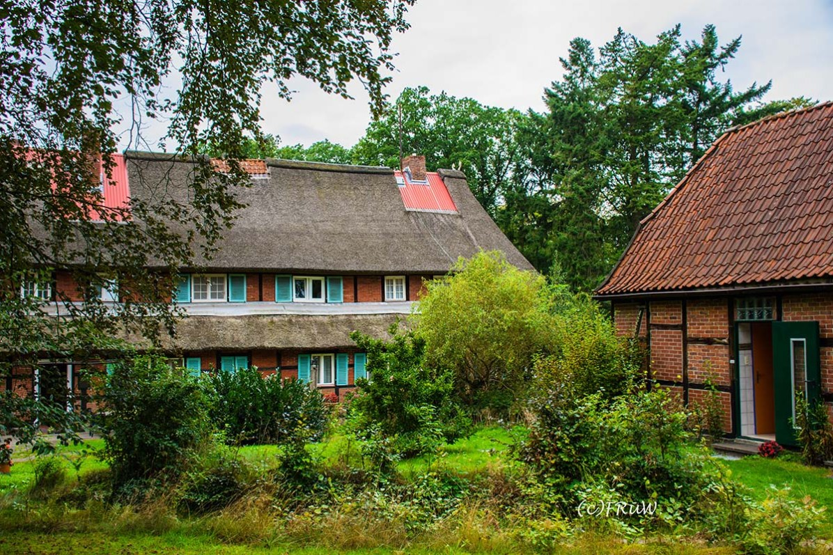 wilsederberg_wilseden_und_campreinsehlen-323