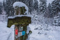 bergischerstreifzugwacholderweg-51