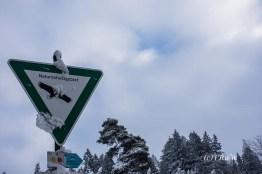 bergischerstreifzugwacholderweg-71