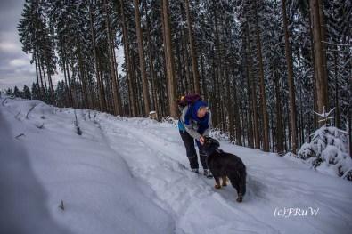 bergischerstreifzugwacholderweg-99