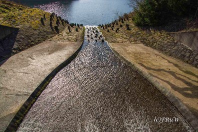 dunntalsperrewanderweg-58-von-109