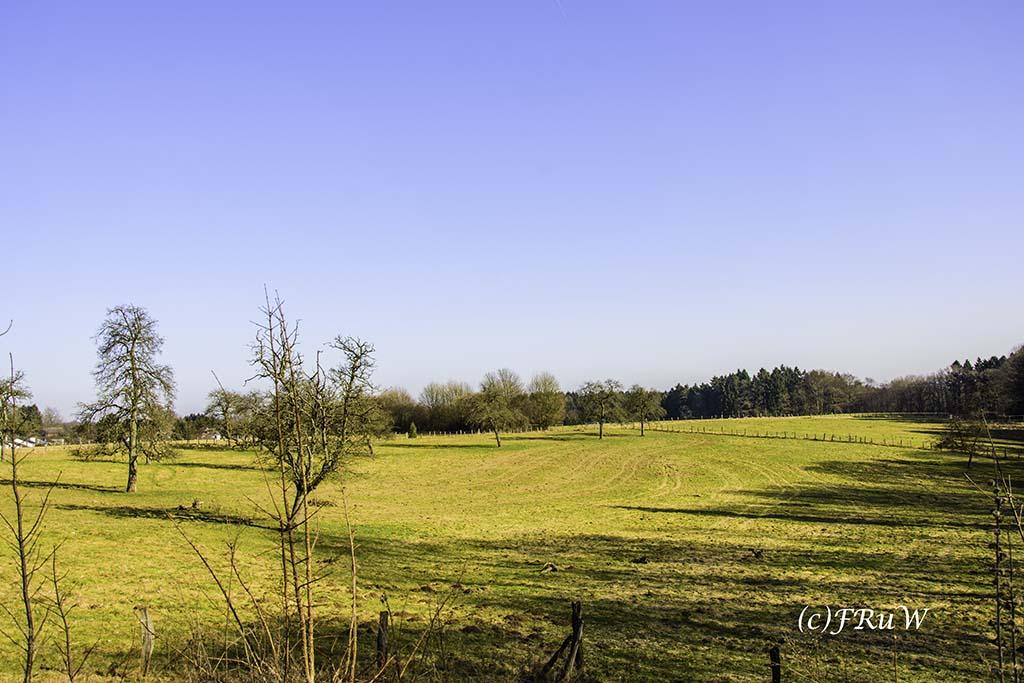 dunntalsperrewanderweg-98-von-109