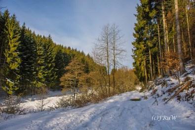 rassberg_gruner_punkt-64