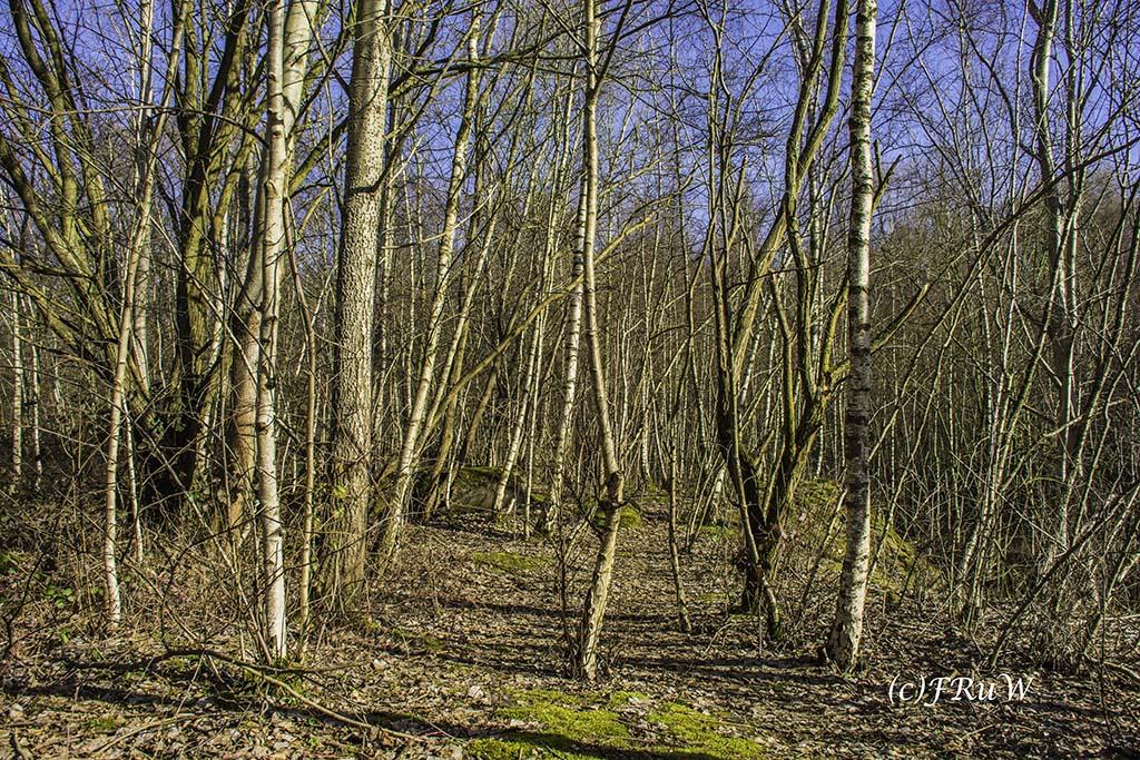 WoodArt (98)