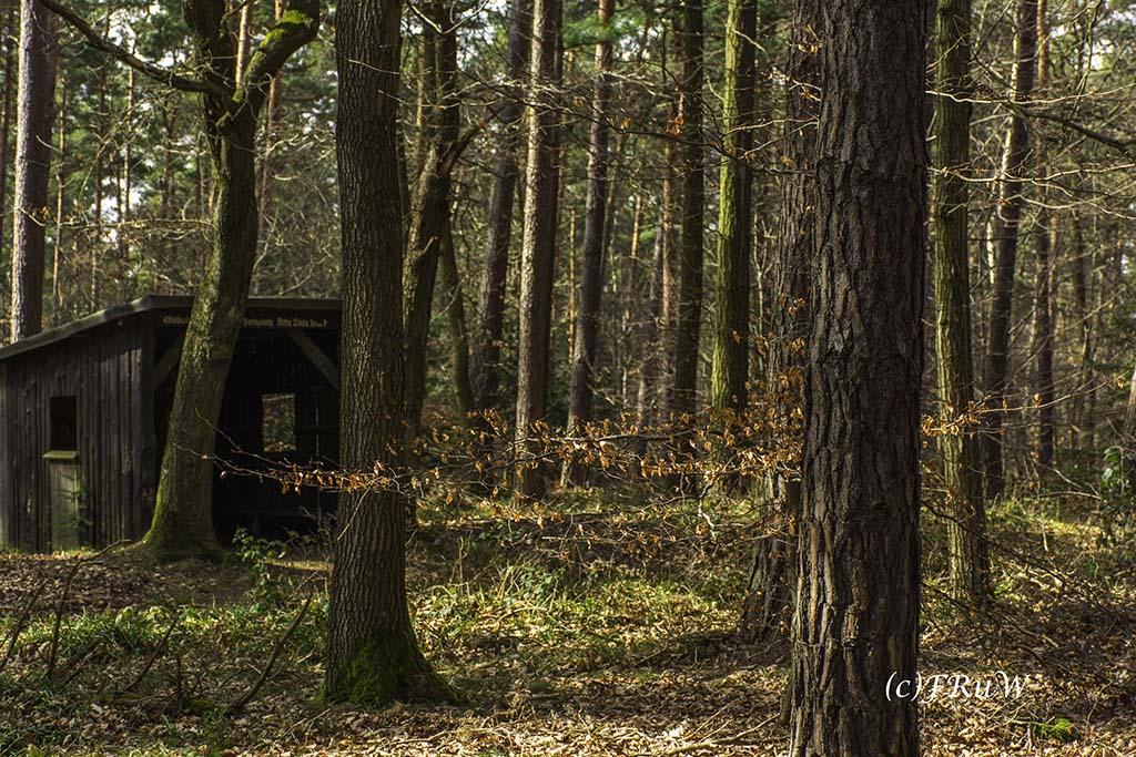 Eisenweg_No5 (61)