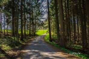 Hungenbachrunde (131)
